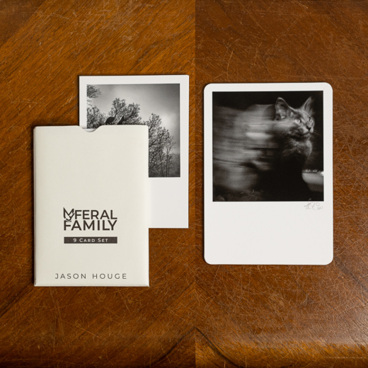My Feral Family Deluxe 9 Card Set. Set Includes 1 of 5 limited edition Fine Art Prints. (Edition Size: 20 of each print) Photo printed on Hahnemühle Photo Rag Fine Art Paper